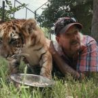 Nicolas Cage to Play Joe Exotic in a Tiger King Series